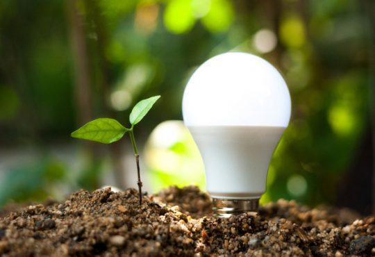 Italia terza nella classifica europea per consumi da fonti rinnovabili