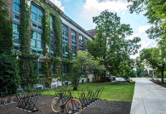 - Scuole verdi - giardini, orti e spazi verdi per le scuole del futuro