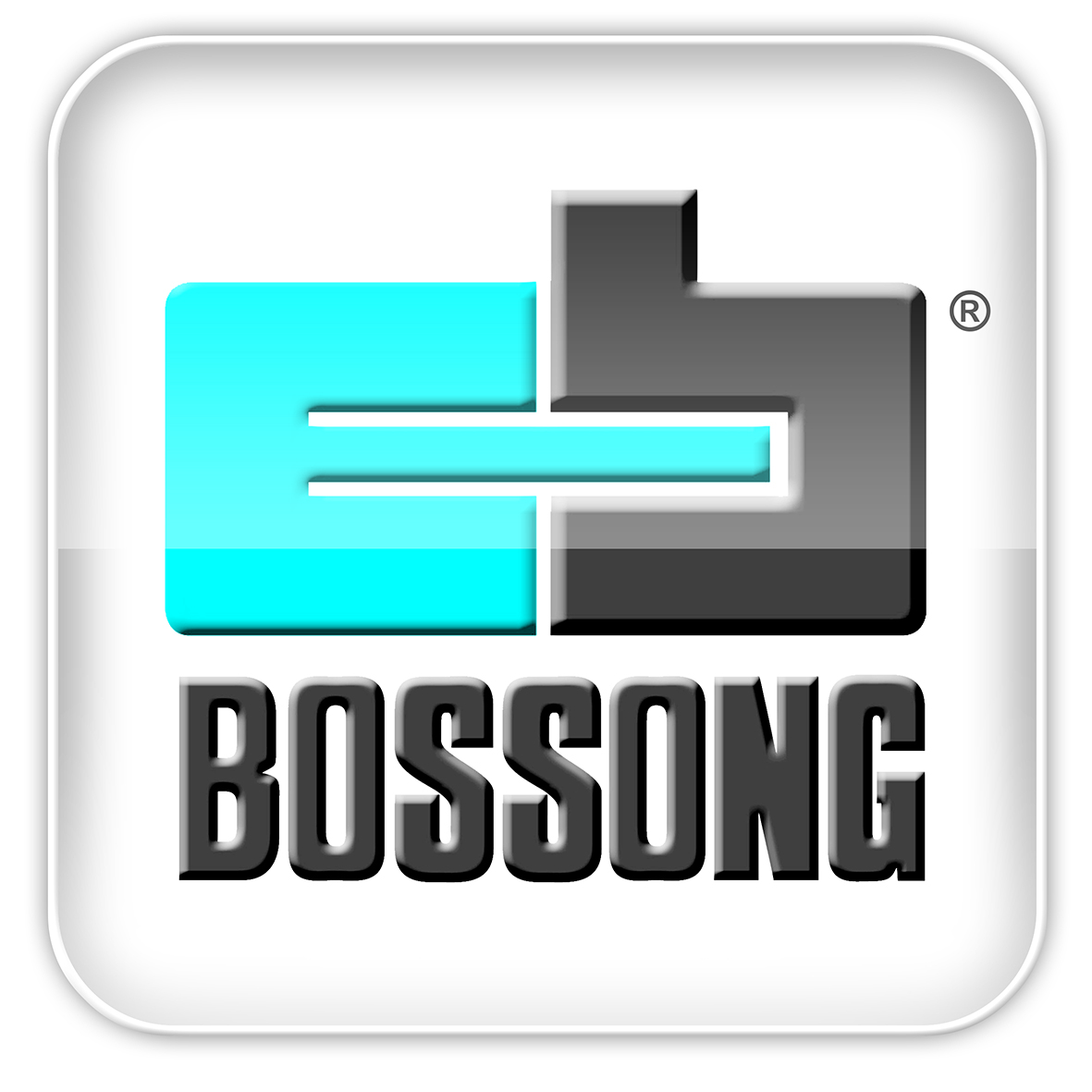 BOSSONG S.p.A.