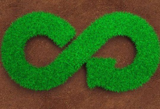 ENEA / Federdistribuzione: packaging ecologico e consumo sostenibile