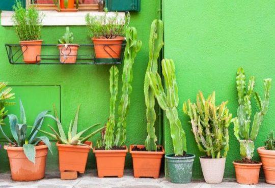 A Venezia prende il via la terza edizione di Urbanpromo Green