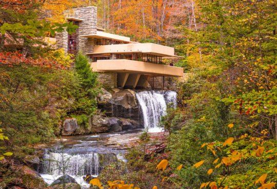 Architettura organica: che cosa è e quali sono i suoi principi